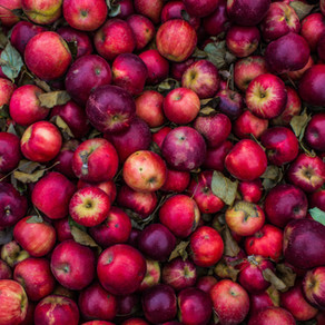 Apples can help with Diarrhea  | Yoga of Eating