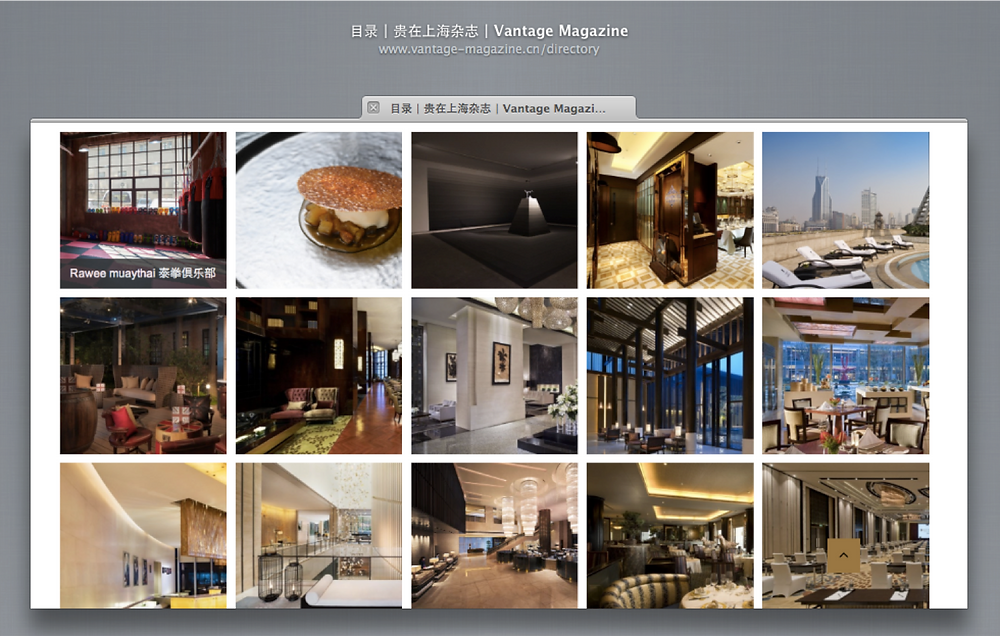 Vantage Magazine listing.png