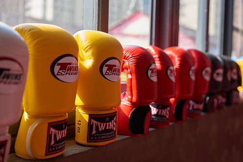 Twins Gloves 12 oz