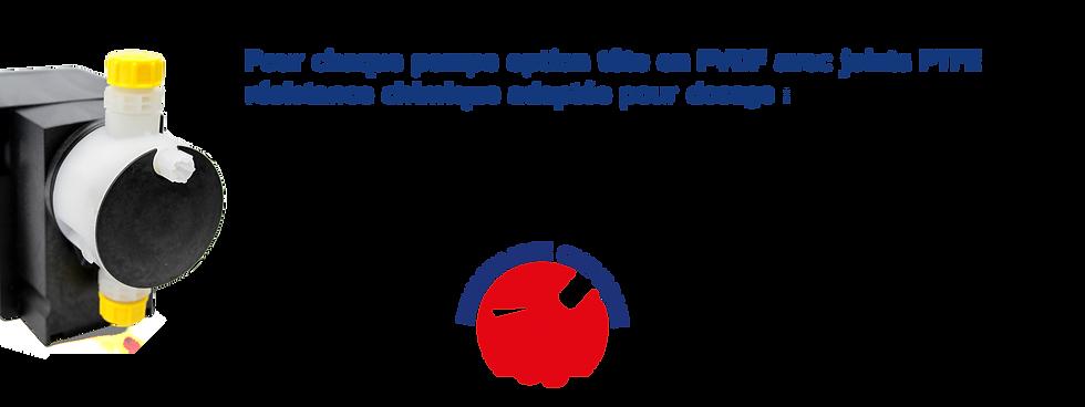 TETE PVDF.png