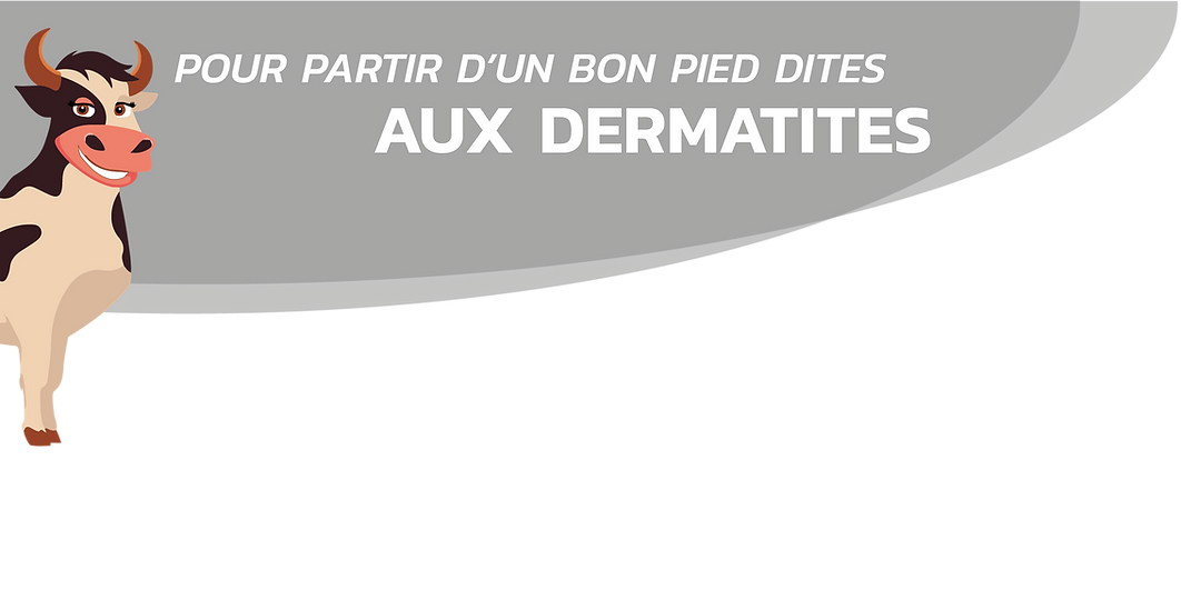 NON dermatites_Plan de travail 1_Plan de