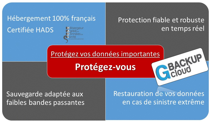 Prot/ège Passeport blind/é Or dor/é Anti-piratage Fabrication Fran/çaise Simili Cuir Voyages Protection Anti RFID