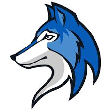 logo Team AFF.png