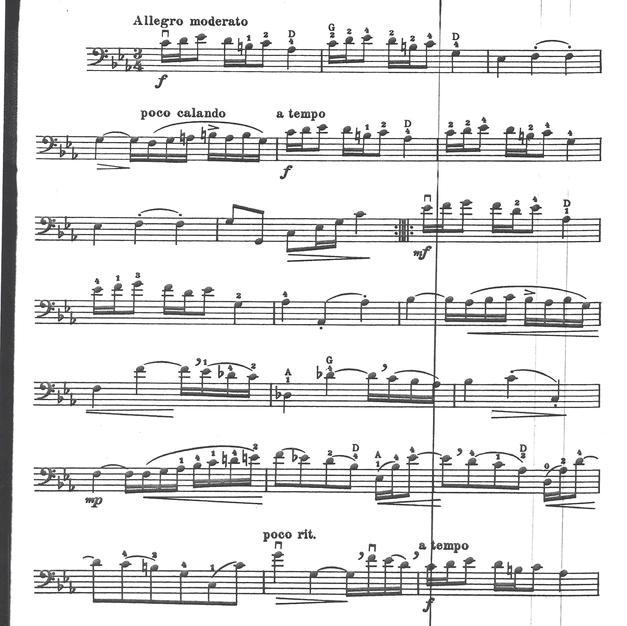 String_Bass (1).jpg