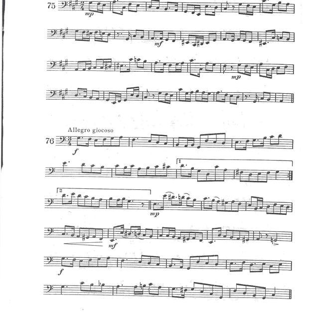 Bassoon (1).jpg
