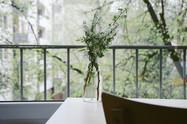 Blumen auf einem Balkon