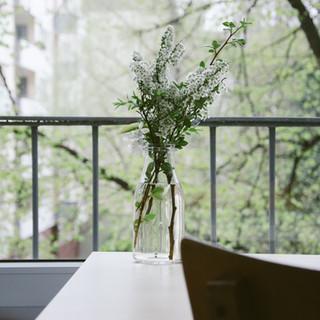 Flowers on a balcony