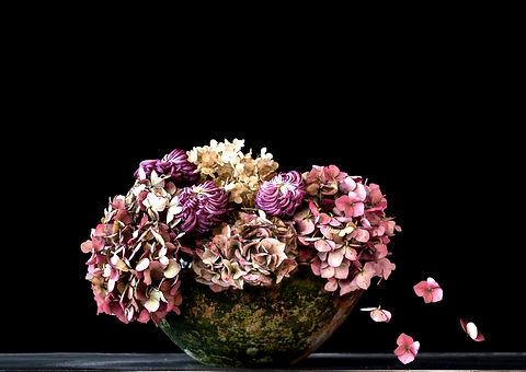 hortensia 40 x 50.jpg