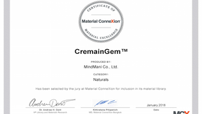 Certificate of Material Excellence for Natural CremainGem