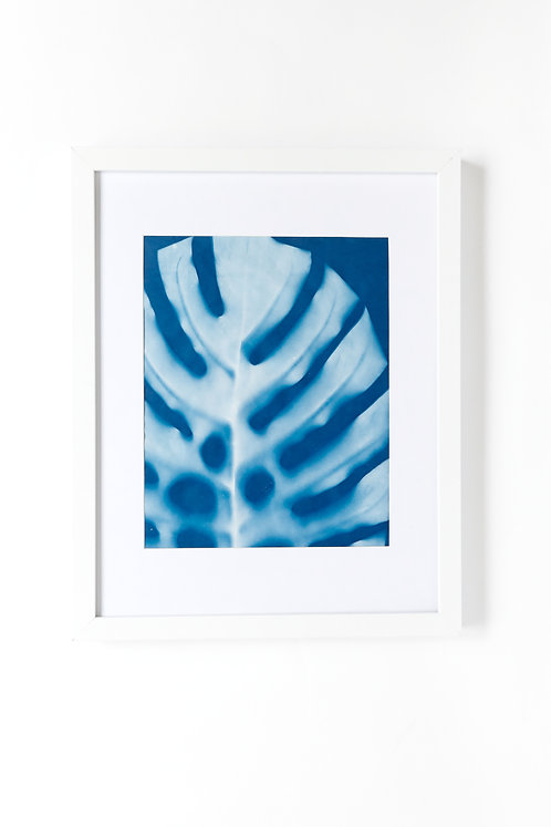 Palm, Hand Printed-limited Edition Cyanotype