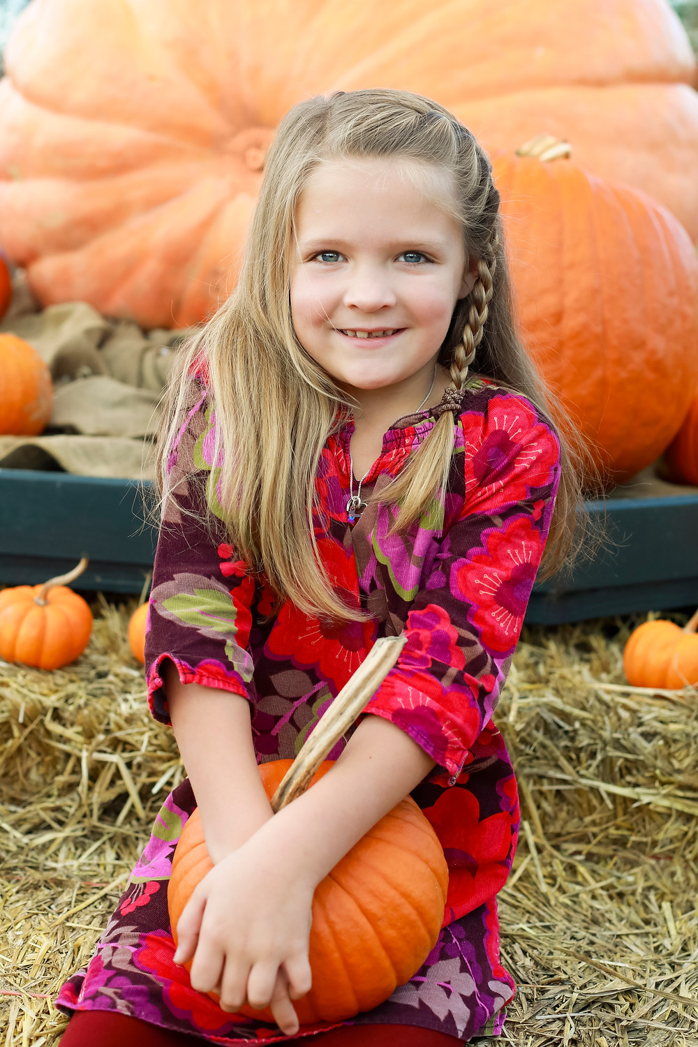 Trisha Kelley Family Fall Mini Session