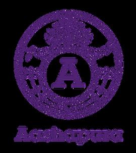 Aashapura_logo_0602_CMYK_edited.png