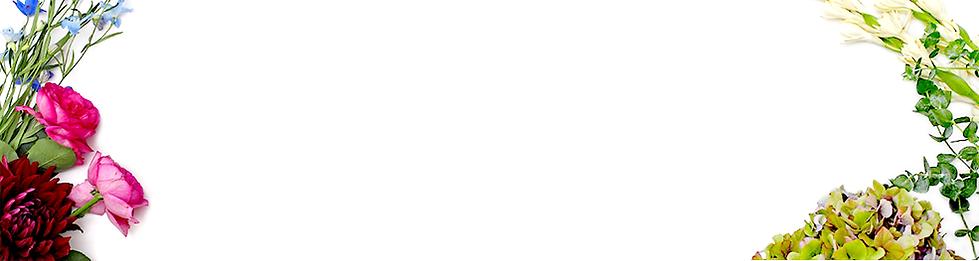 導入スクール~introduction~メニュー01.png