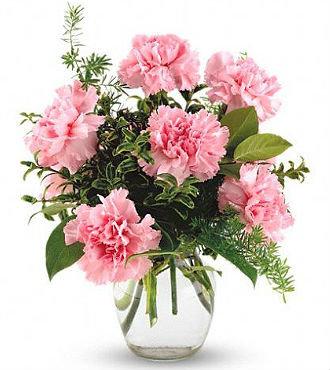 Pink  Bouquet (HBFS62)