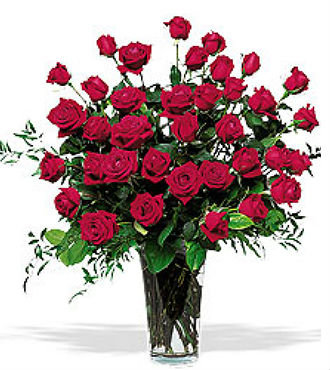 Three Dozen Red Roses (BFS74)