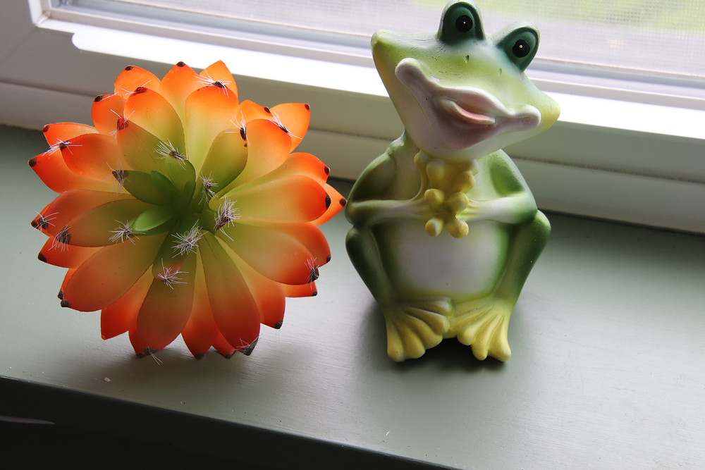 My Green Frog and Flower