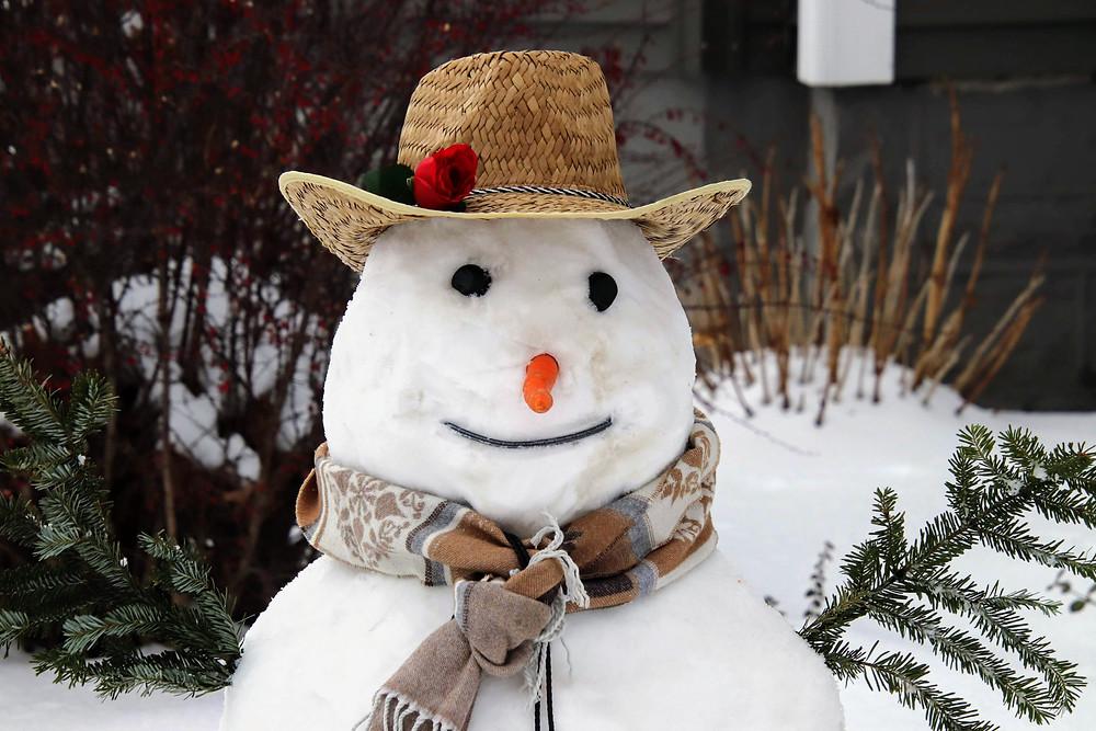 Snowman February 2020