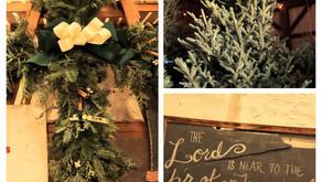 The Tree Lot, Albion NY December 2020