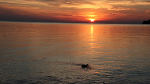 A Sunrise At Point Breeze NY, August 2020