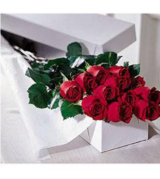 One Dozen Boxed Roses (BFS51)