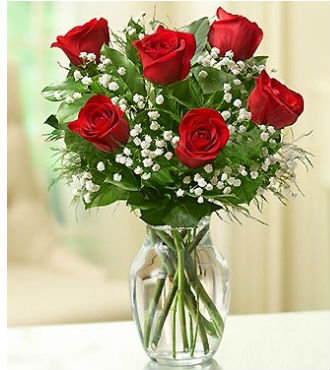 1/2 Dozen Roses Arranged (BFS76) - Color Options Available