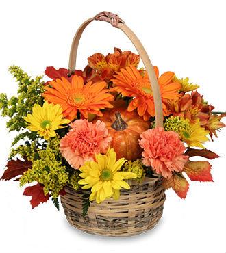 Fall Harvest Bouquet (HBFS11)