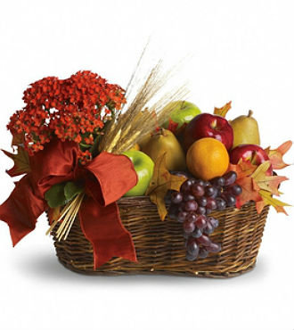 Fall Harvest of Fruit/Flowers (HBFS15)