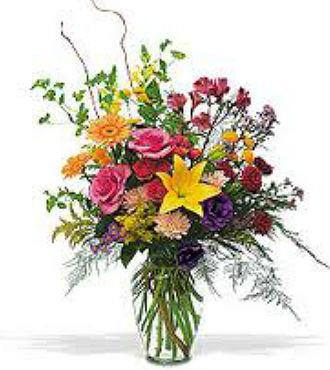 Embrace Color Bouquet (BFS60