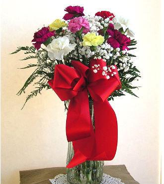 One Dozen Carnations in a Vase (BFS59)