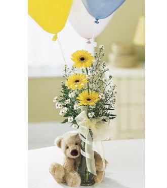 Welcome Bear Bouquet (BFS26)