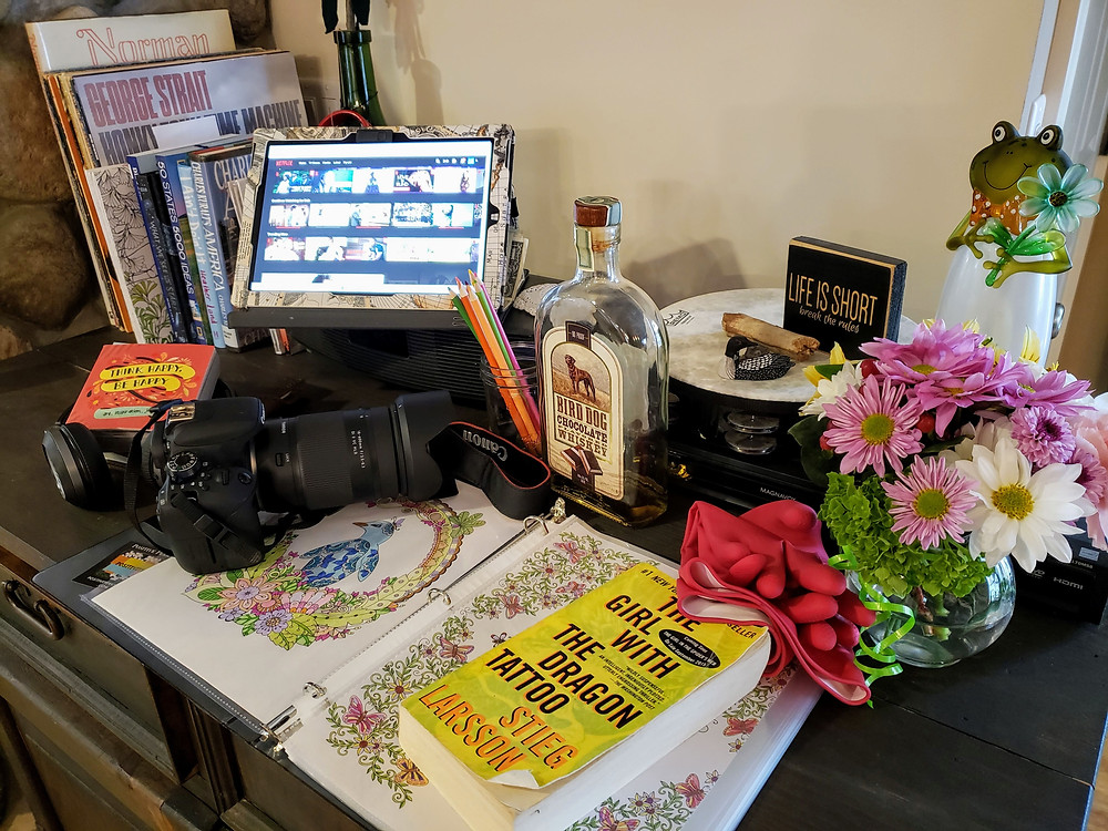 Everything a Girl needs for a Coronacation/Staycation - Books, Creativity, Entertainment, Projects and Chocolate Bird Dog
