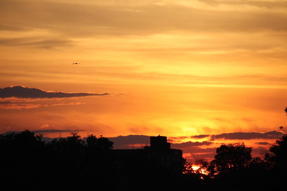 Sunset Blazing