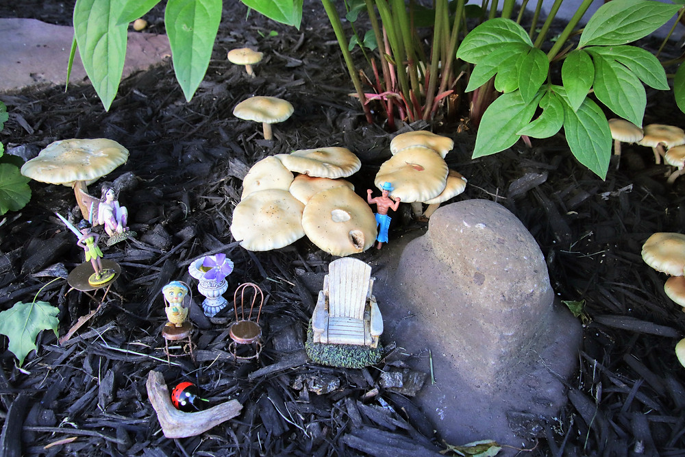 The Fairy Garden has an On Looker