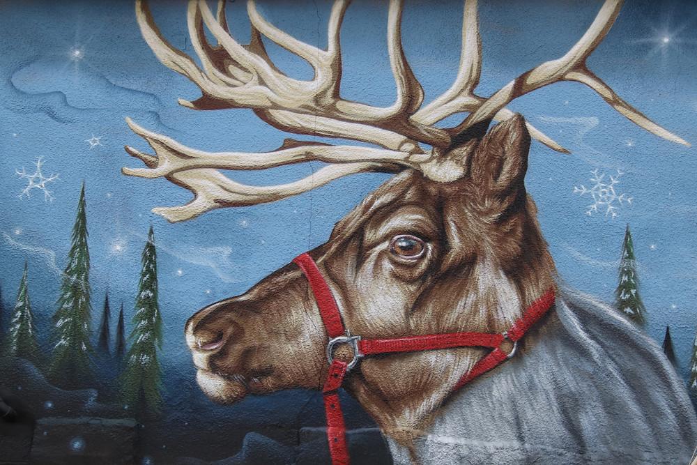 Reindeer Magic!