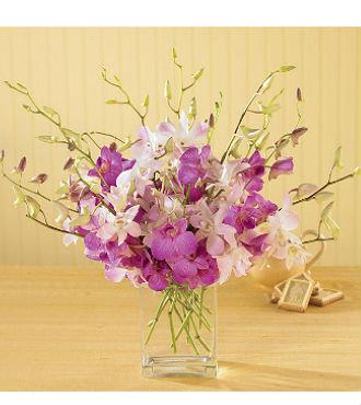 Exquisite Exotics Bouquet (BFS77)