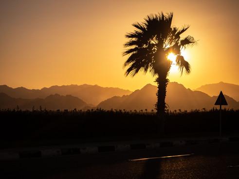 Ключевые вопросы цифровой трансформации в Шарм-ель-Шейх