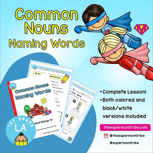 1st Grade Language Arts: Common Nouns (Naming Words)