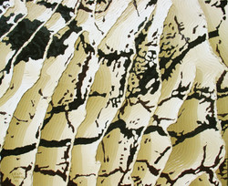 244 - Oil on canvas 45X55 cm.jpg