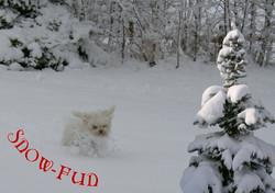 SnowFun01-DIN A3.jpg