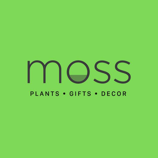 Plant Boutique