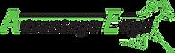 Advantage Edge Logo.png