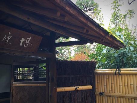 ティー・エレメント茶会 in 京都国立博物館を終えて