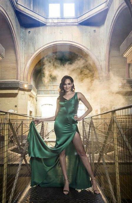 Nicola Da Silva - 2017 Logies gown
