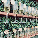champagne wall.PNG