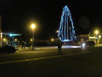 Christmas Tree Lighting 2014