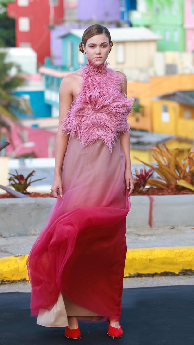 Stella Nolasco | La Perla Vive