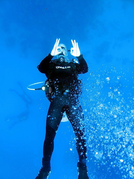 Scuba Diver in the Water