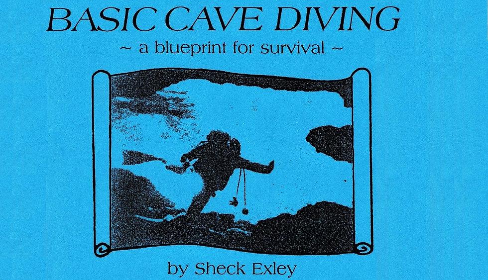 Sheck Exley Blueprint for Survival
