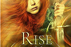 Review: Rise of the Flame by K.N. Lee