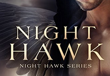 Review: Night Hawk by J.E. Taylor